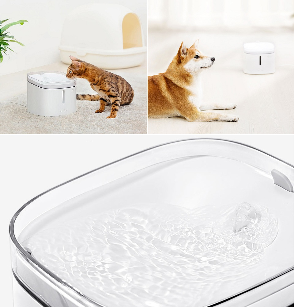 Поилка для животных Kitten Puppy Water Dispenser White MG-WF001 в комнате