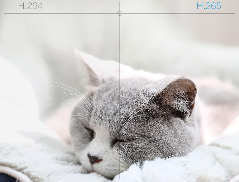 IP Камера iMi Xiaobai Smart Camera PTZ Edition CMSXJ16A кот отдыхает